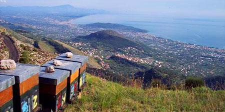 arnie a Formia, sui Monti Aurunci, affacciate sul golfo di Gaeta