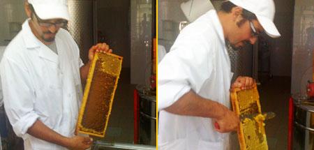 Giuliano nel laboratorio del miele Florapi a Maranola di Formia