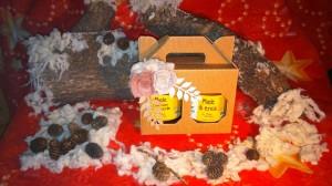 Florapi_confezione_regalo_miele_Natale2015